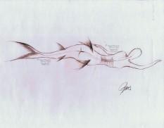 """8"""" x 11"""" graphite on 80# matte paper"""